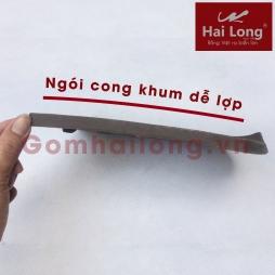 Ngói mũi hài 220 chất Sành