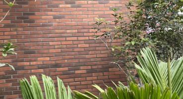 gạch thẻ ốp tường